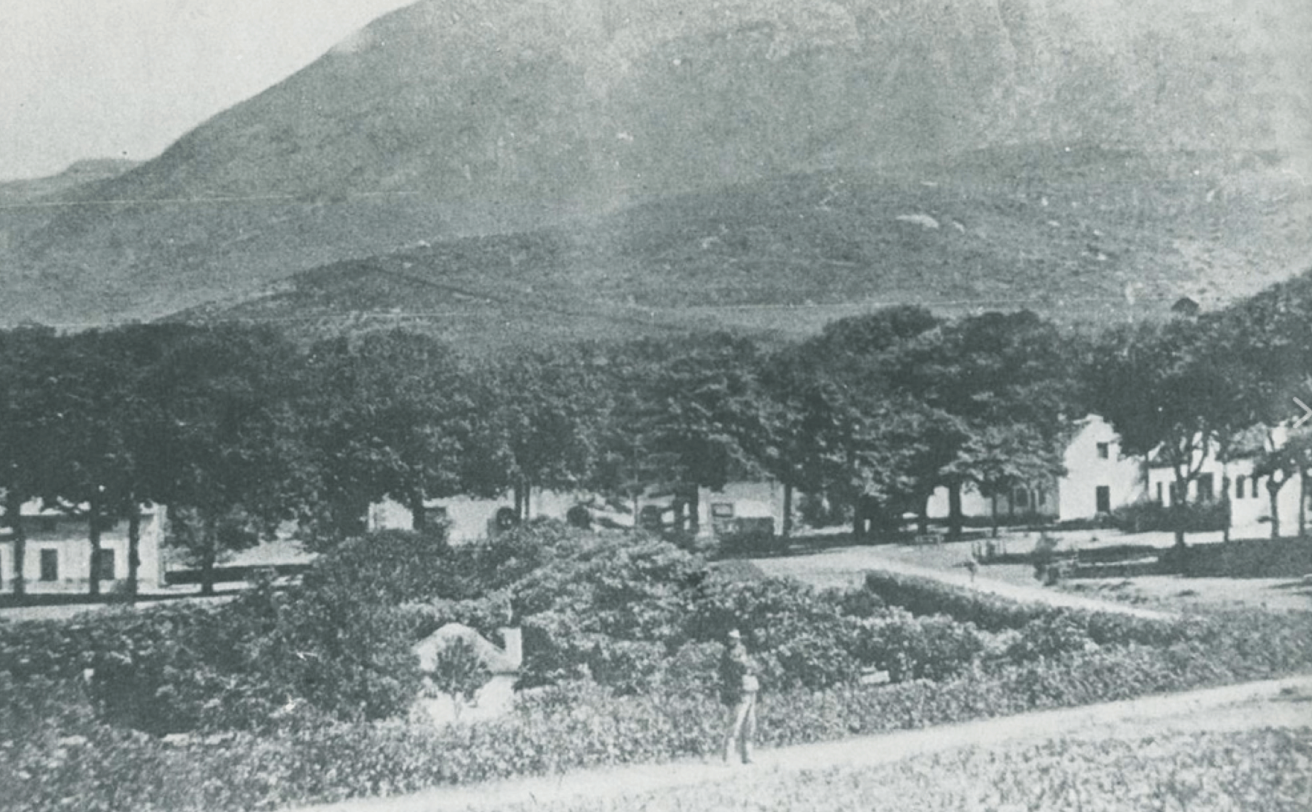 image of High Constantia farm dated 1861